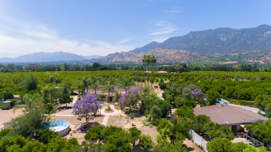 Ojai Ranch for Sale