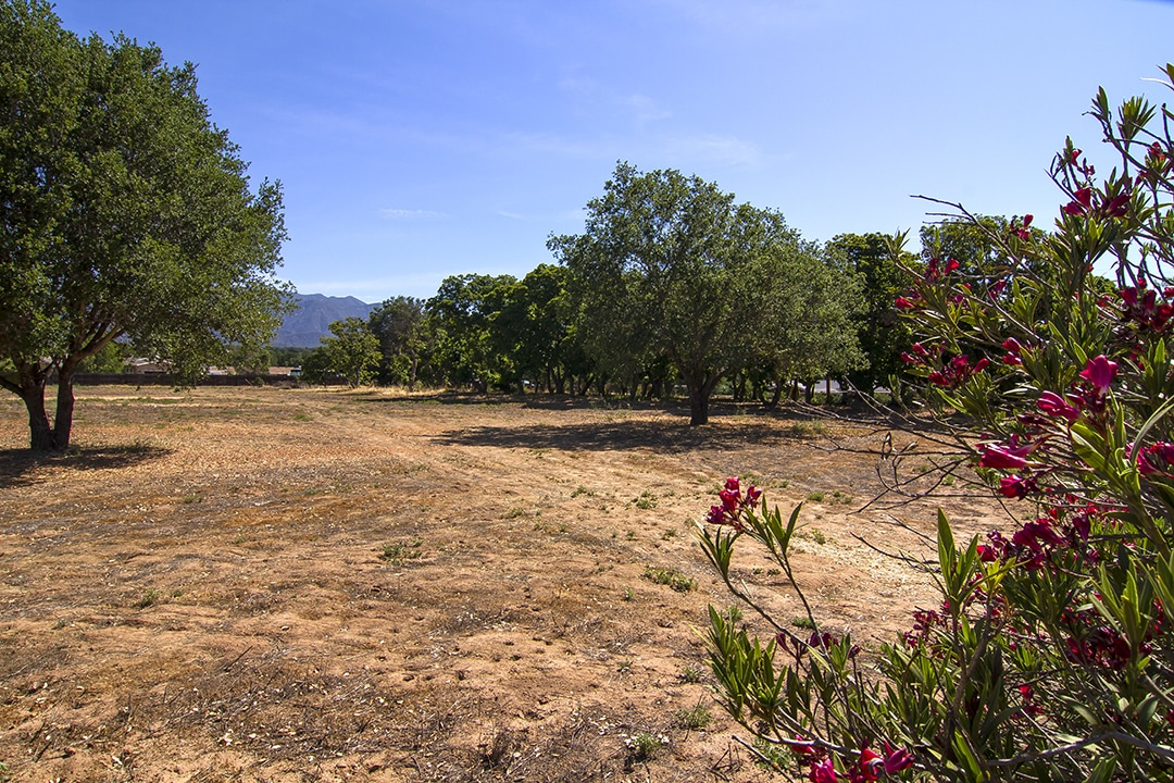 Ojai Lot for Sale La Luna